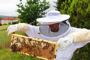 mit unseren Bienen